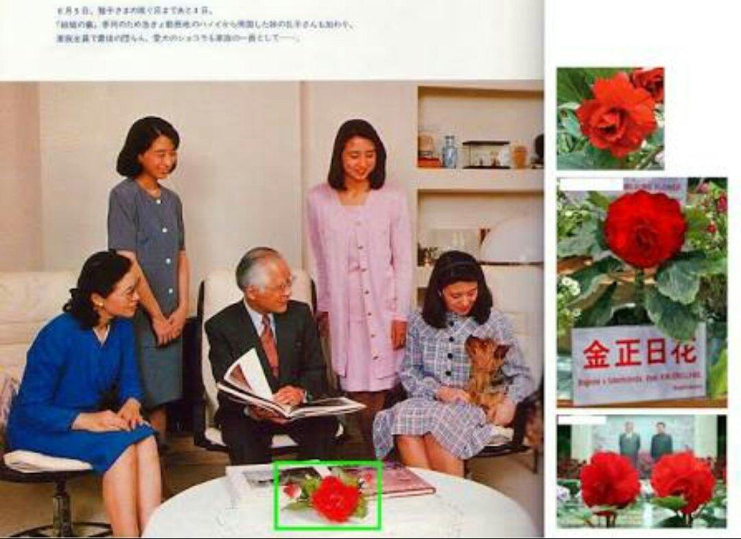 「北朝鮮 花 雅子様」の画像検索結果