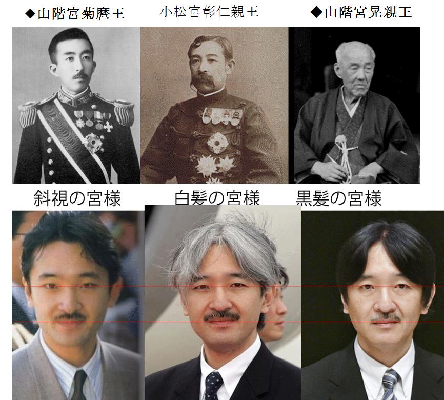 「秋篠宮  山階宮」の画像検索結果